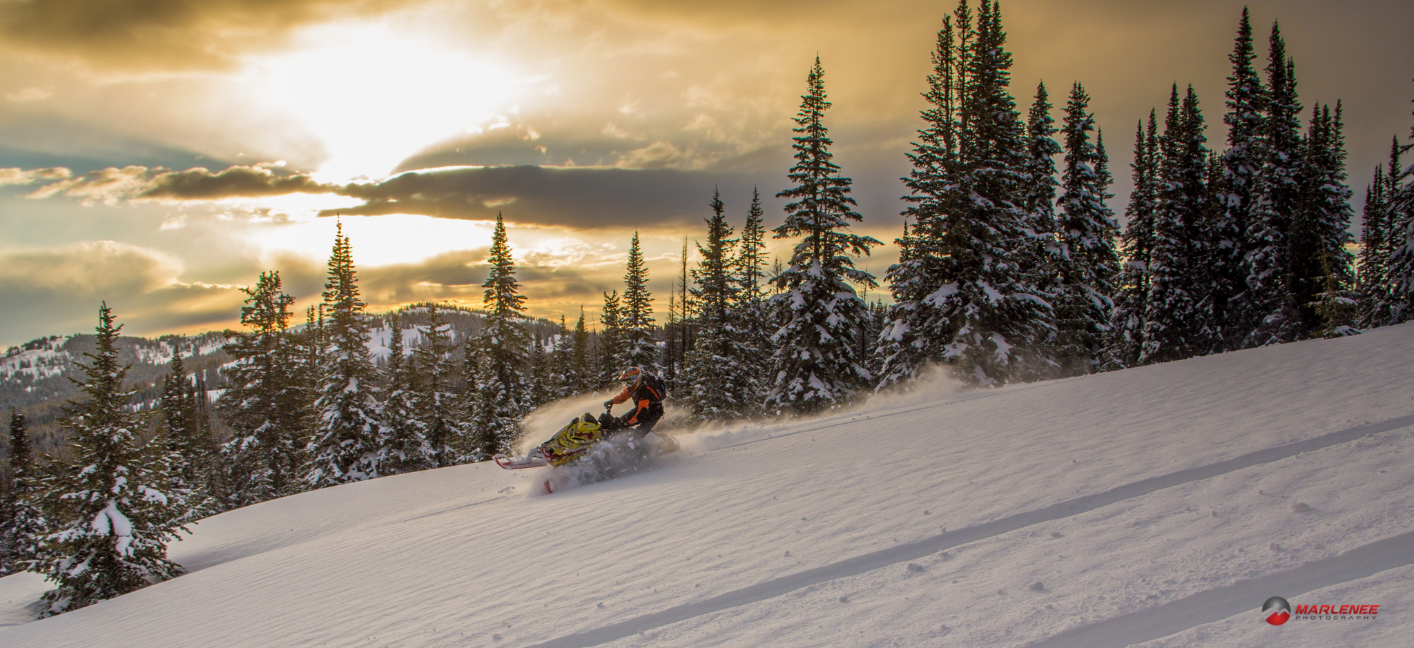 Matt Entz in the Golden Hour - Photo by Adam Onasch